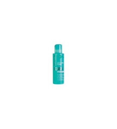 Revlon Equave active d. hydronutritive shampoo 750ml